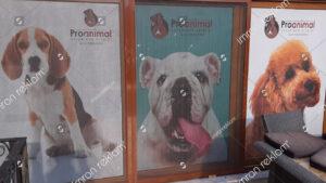 Pet Shop Cam Giydirme